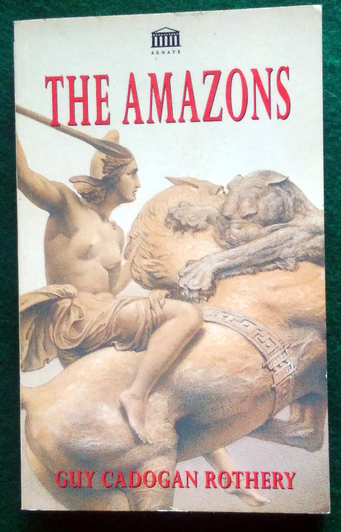 Image for THE AMAZONS